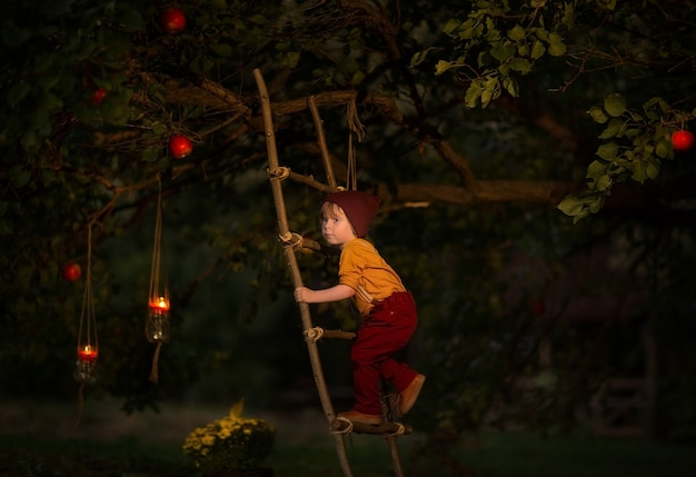 Little boy climbing a magical apple tree by wooden ladder at night. fairy tale. copy space.