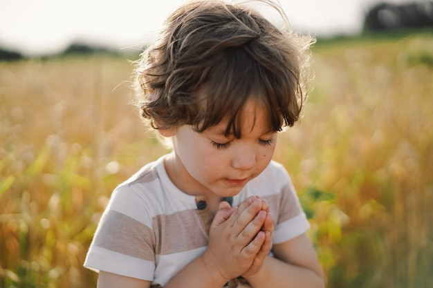Little boy closed her eyes, praying in a field wheat. hands folded in prayer. high quality photo