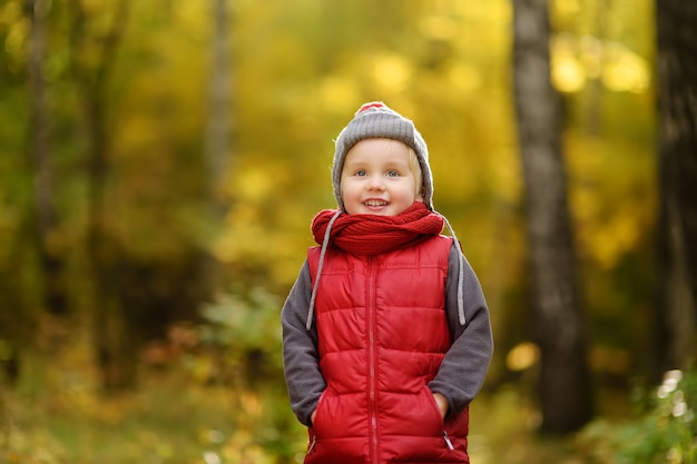 Little boy during stroll in the forest at sunny autumn day