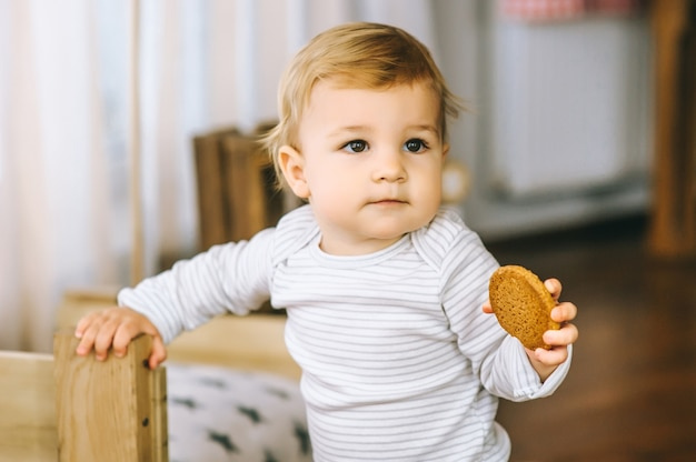 Little boy eating biscuits with milk