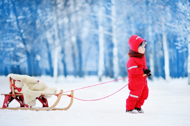 Little boy enjoying a sleigh ride. child sledding. toddler kid riding a sledge. children play outdoors in snow. kids sled in winter park. outdoor active fun for family vacation.