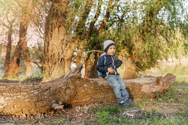 Маленький мальчик, изучающий природу, отдых, маленький мальчик, идущий в лесу