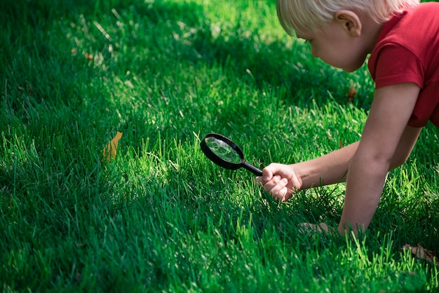 Little boy exploring with magnifying glass looks at grass. investigation discovery concept