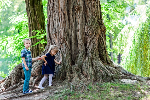 Little boy and girl brother and sister standing beside a big stump of an old tree