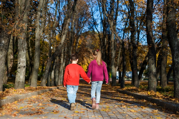Little boy and girl go hand in autumn park. back view