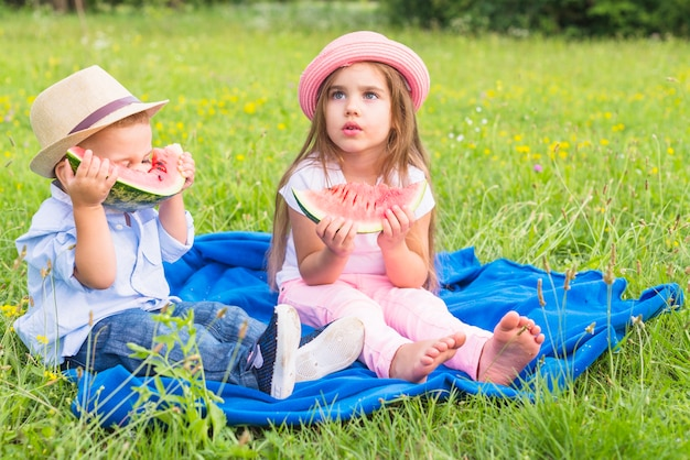 Little boy and girl sitting on blue blanket over green grass eating watermelon