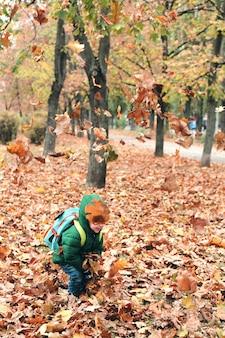 Маленький мальчик весело в красивом парке с сухими желтыми и красными листьями. осенняя семейная прогулка в лесу.