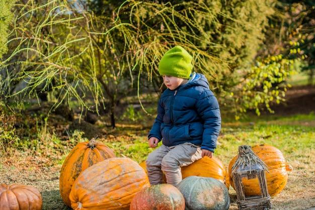 Маленький мальчик с удовольствием с тыквами на тыквенный патч на ферме