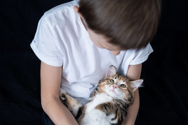 Маленький мальчик держит прямо курильского котенка бобтейла