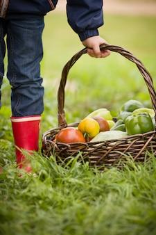 Маленький мальчик держит плетеную корзину с органическими свежесобранными овощами на зеленой траве