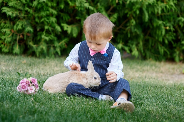 草の上のウサギと遊ぶスーツの男の子
