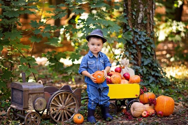 Маленький мальчик в тракторе с тележкой с тыквами