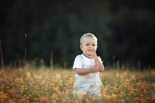 Маленький мальчик летом на прогулке в поле