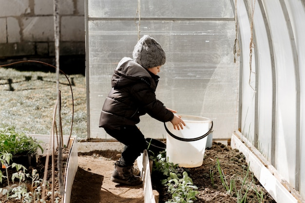 A little boy is planting and watering vegetable seedlings in a greenhouse, an early eco crop