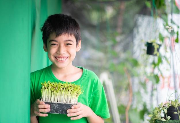 Маленький мальчик сажает микро-зеленый росток ипомеи в домашнем саду