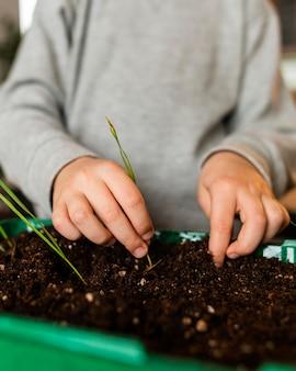 Маленький мальчик сажает рассаду дома