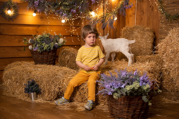 Little boy play with a white goat in a barn on the background of hay in farm