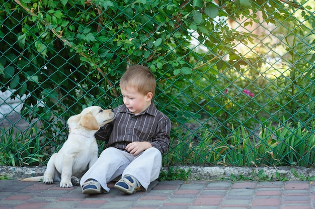 Little boy playing with a puppy labrador in the park