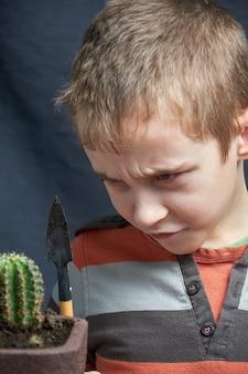 小さな男の子は彼の観葉植物のサボテンを置きました