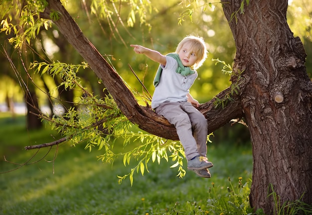 Little boy sits on a branch of a big tree and points with his finger.
