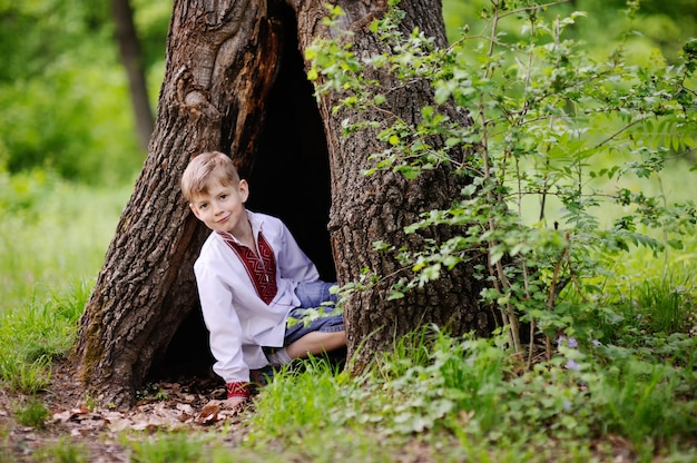 Little boy sits in a hollow tree. the child is dressed in a shirt with the ukrainian ornament