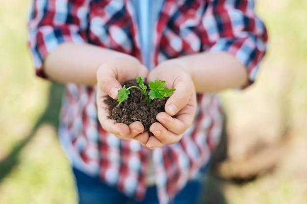 家族の庭で屋外に立って、緑の芽で一握りの土を持っている小さな男の子