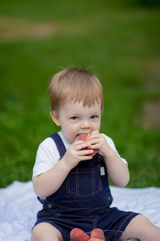 Little boy toddler sitting in the park and eating a peach