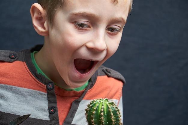 小さな男の子は彼の観葉植物のサボテンを食べようとします