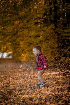 Маленький мальчик гуляет на природе осенью, дошкольник в осеннем парке в желтых листьях.