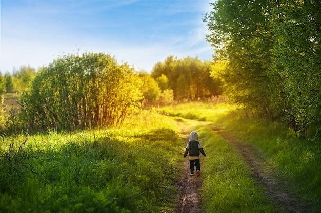 少年は森の道を歩く