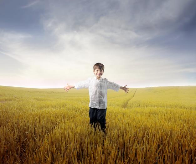 Little boy on a wheat field