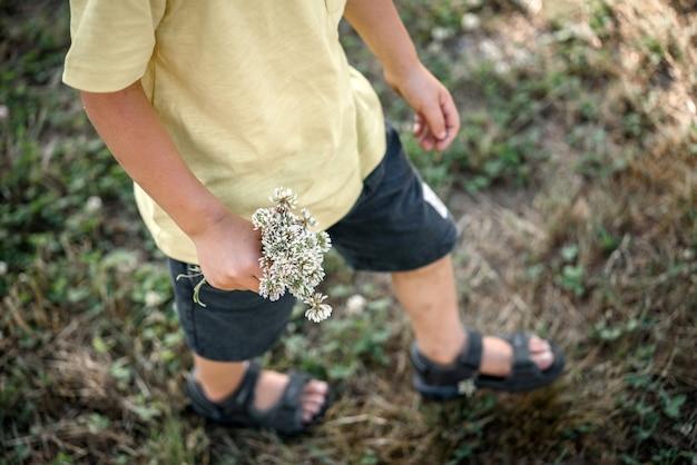 흐릿한 배경으로 푸른 여름 초원을 걷고 있는 손에 흰 클로버 꽃 다발을 들고 있는 어린 소년 프리미엄 사진