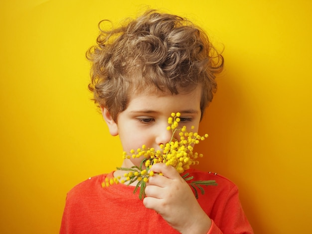 Little boy with curly hair with mimosa flowers on yellow background