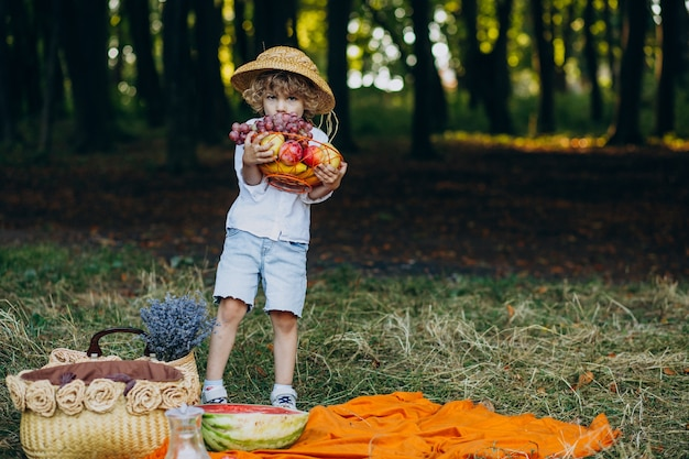 Little boy with grapes in forest on a picnic
