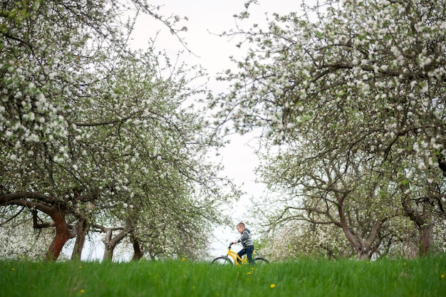 Little boy on yellow bicycle in spring garden. child, cycling, beautiful nature and lifestyle concept