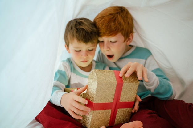Little boys at home on christmas morning with gift