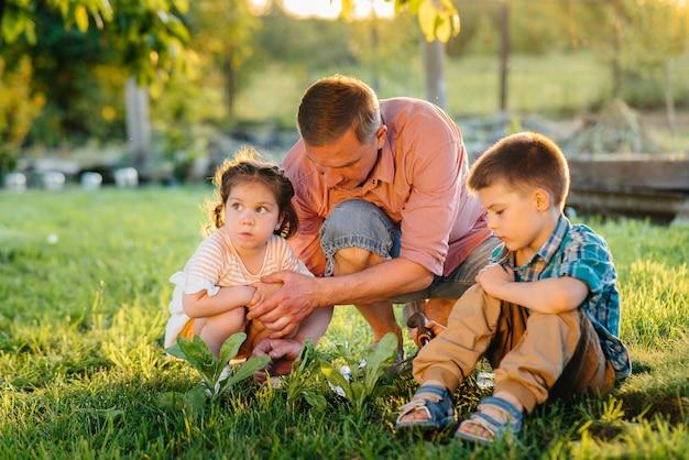 Маленький брат и сестра сажают саженцы с отцом в прекрасном весеннем саду на закате. новая жизнь. сохранить окружающую среду. бережное отношение к окружающему миру и природе.