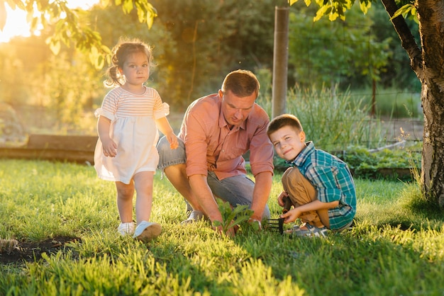 弟と妹は父親と一緒に苗を植えています