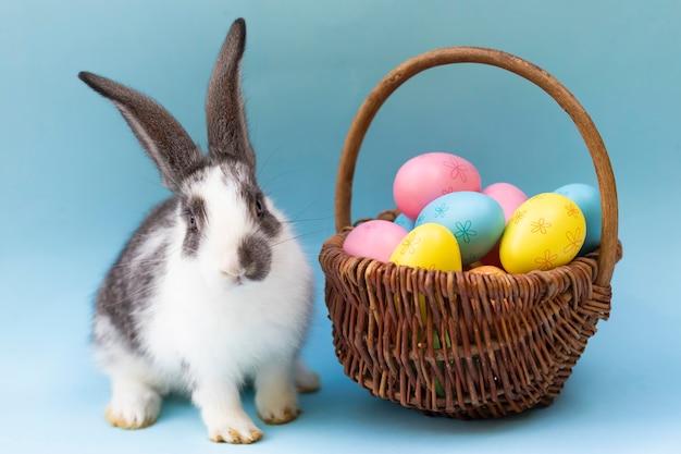 Маленький кролик и крашеные яйца