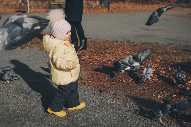 A little child chasing pigeons.