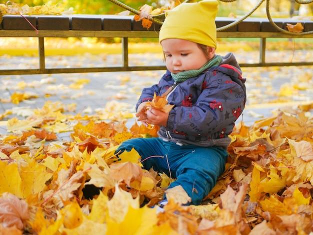 黄色の葉の真ん中に小さな子供