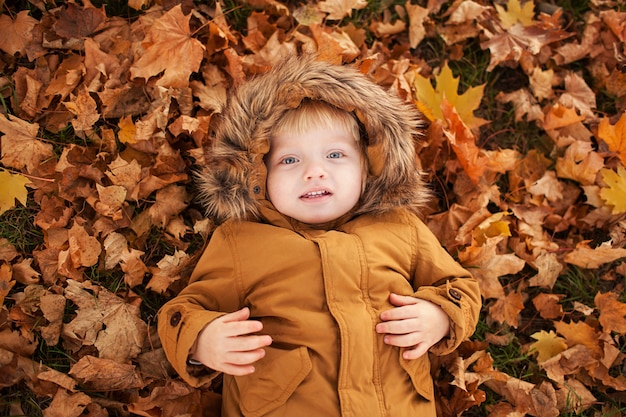 小さな子供は公園で秋の紅葉に横たわっています
