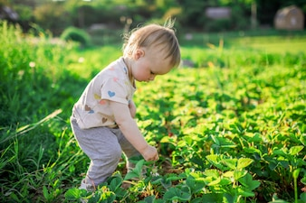 Little child plays on the green field with bugs