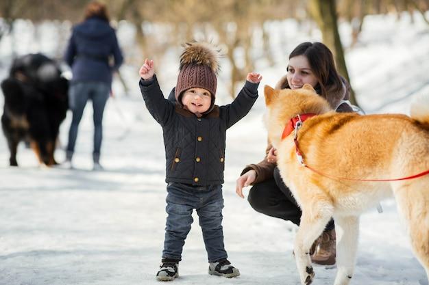 Маленький ребенок играет со смешной собакой акита-ину в зимнем парке