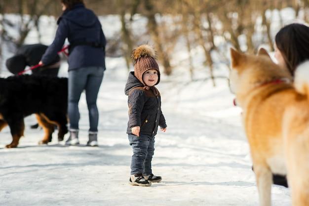 Il piccolo bambino gioca con il cane divertente di akita-inu in un parco dell'inverno