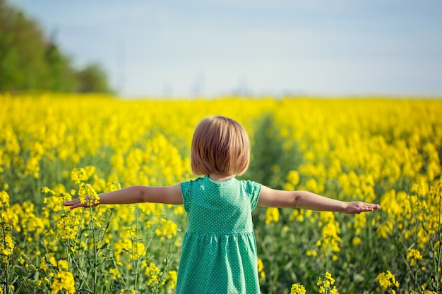 Little child with arms opened on yellow field in sunny summer day