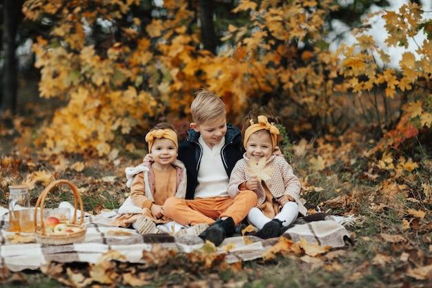 小さな子供たちはピクニックで秋の公園の格子縞に座ります。