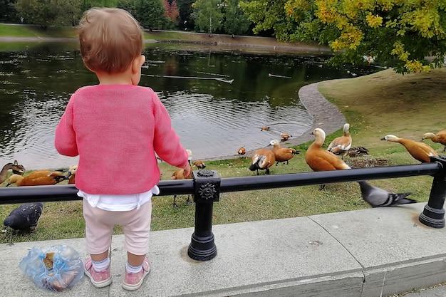 귀여운 아기 소녀가 공원 연못 울타리에 서서 오리에게 빵을 먹인다