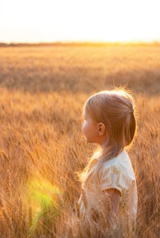 Little cute blonde girl in the yellow dress in the wheat field at sunset with sun reflections