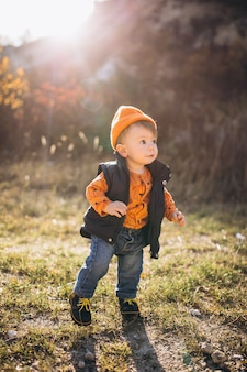 Little cute boy in an autumn park